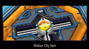 Shalour City Gym