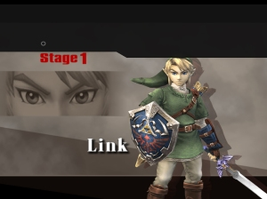 The first round in Classic Mode Brawl is always against characters from The Legend of Zelda... so that gets that one out of the way.