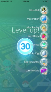 Go Level 30